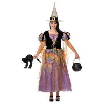Disfraz Bruja Buena Mujer