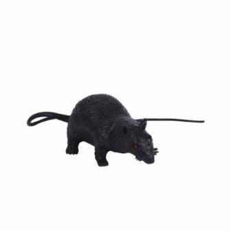 Rata 15 cms. látex