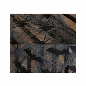 Telas surtidas murciélagos/arañas 75x30