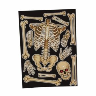 Decoración ventana esqueleto 30x40 cms.