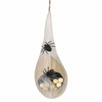 Huevos de araña con telarañas
