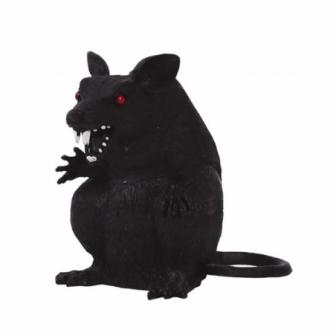 Rata sentada 18 cms.