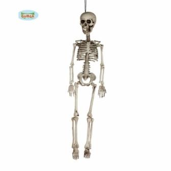 Esqueleto 60cm
