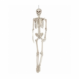 Colgante Esqueleto 160 cm