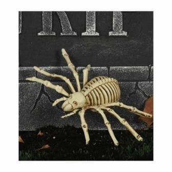 Esqueleto Araña 24 cm