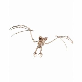 Esqueleto de Murciélago ( 7x32x72cm )