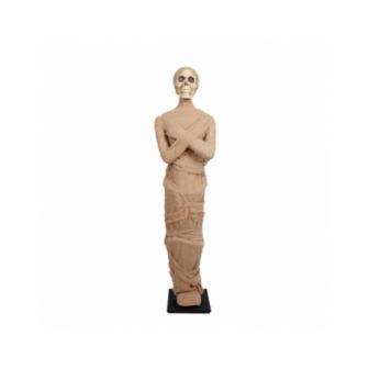 Momia de pie ( 157x47x27 cm )